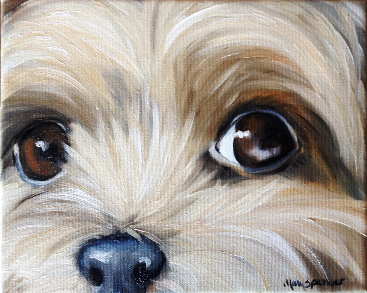 Sparrow yorkshire terrier teacup puppy dog oil painting for Painting of your dog