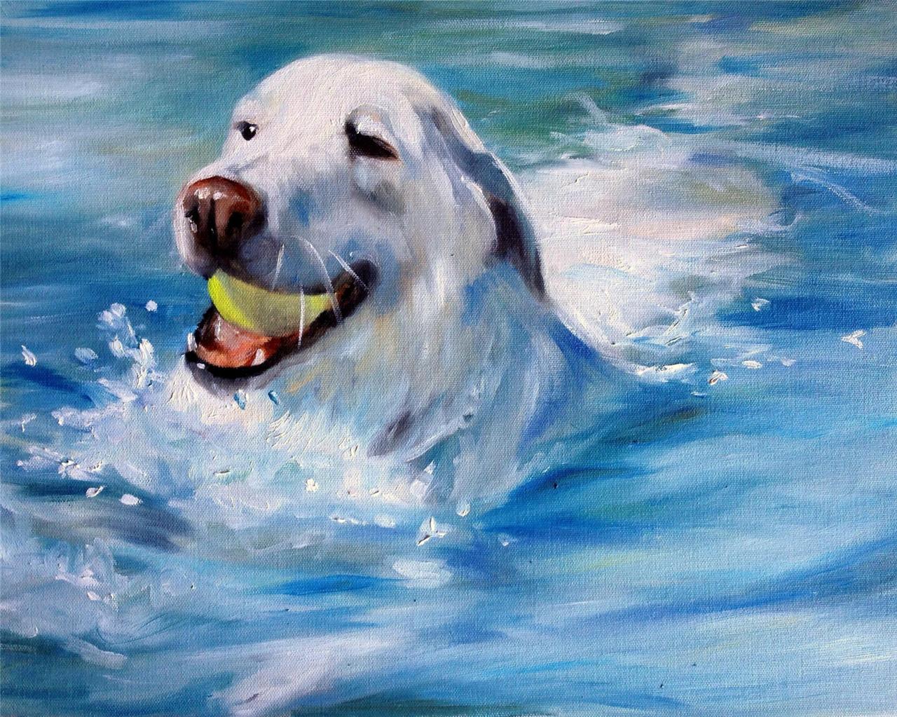Sparrow Yellow Labrador Retriever Lab Dog Painting Swimming Pool Water Original Ebay