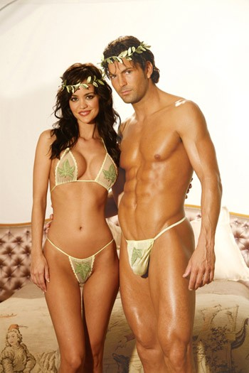 couples naughty lingerie costumes