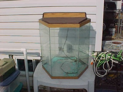 20 gallon octagon aquarium details about octagon fish for Hexagon fish tank lid