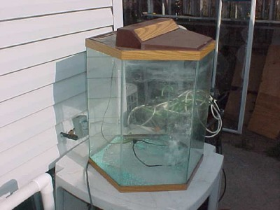 Octagon fish tank aquarium 20 gallon ebay for Hexagon fish tank lid