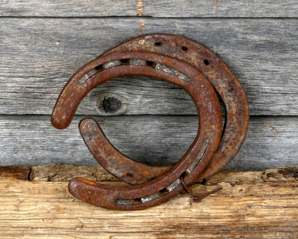 Rustic lucky horseshoes western decor texas rusted ebay for How to decorate horseshoes