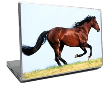 Laptop Computer Skin Decal Sticker Pony BROWN HORSE