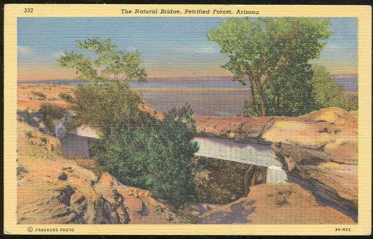 NATURAL BRIDGE PETRIFIED FOREST, ARIZONA, Postcard