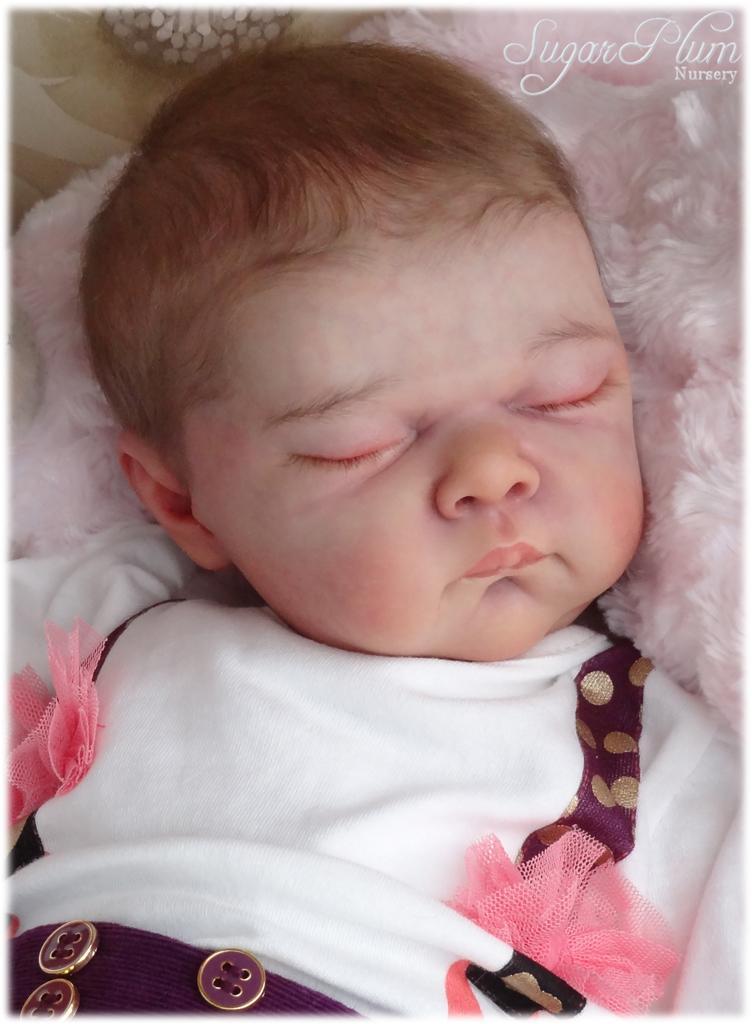 Sugar Plum Nursery Reborn Baby Girl Doll Rose By Adrie
