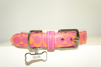 New Coach Pink Orange Signature Printed Leather Dog Collar Bone Charm Size s L