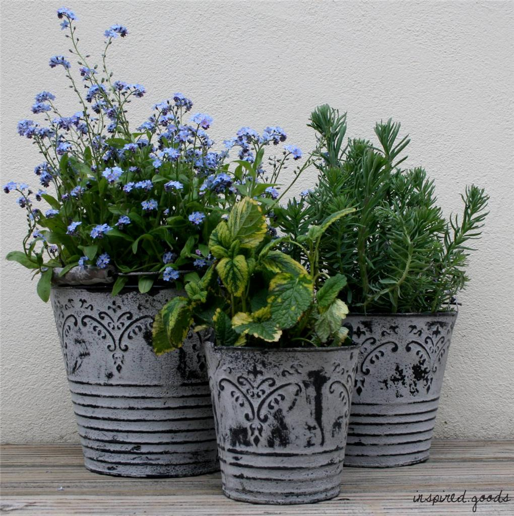 shabby chic french grey metal buckets planters vintage