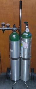 Portable Oxygen System w/ Cart Dual Gauge for Doctor, Dental