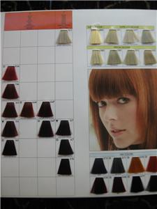 keune tinta color professional hair color chart new ebay - Keune Color Swatch Book