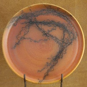 Navajo-Indian-Horse-Hair-Pottery-Plate-Signed-by-Jetter