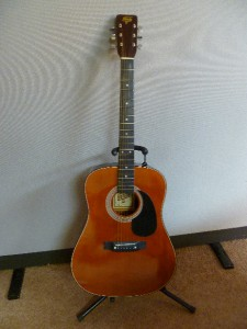 Vintage 1980s Hondo Ii Acoustic Guitar W Case Model H119a