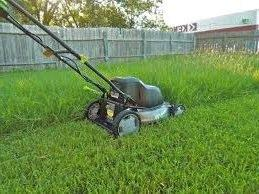 Mowing your lawn in the autumn