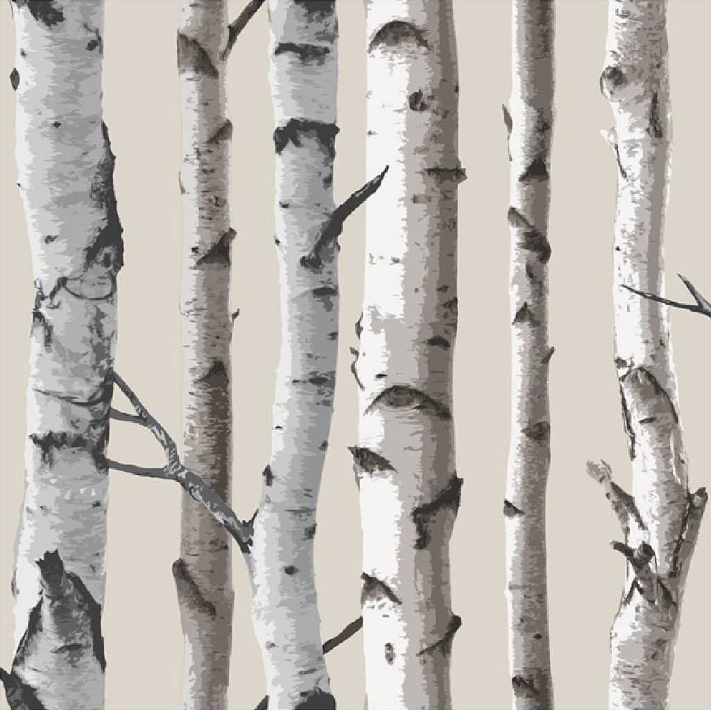 New birch tree woods branches jungle forest print 10m for Birch trees wallpaper mural