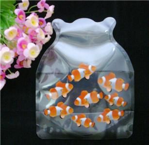 Fish Glass Vase - Compare Prices, Reviews and Buy at Nextag