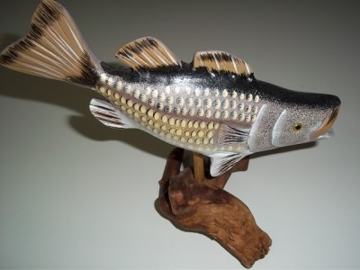 Http Www Ebay Co Uk Itm 8 Inch Wood Large Mouth Bass Fish Stand Desk Shelf