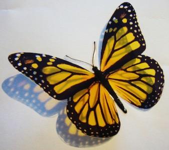 10 3D GOLDEN YELLOW Butterfly Wall Decor Art Nursery Baby Kids Room