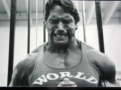 the gallery for gt world gym arnold