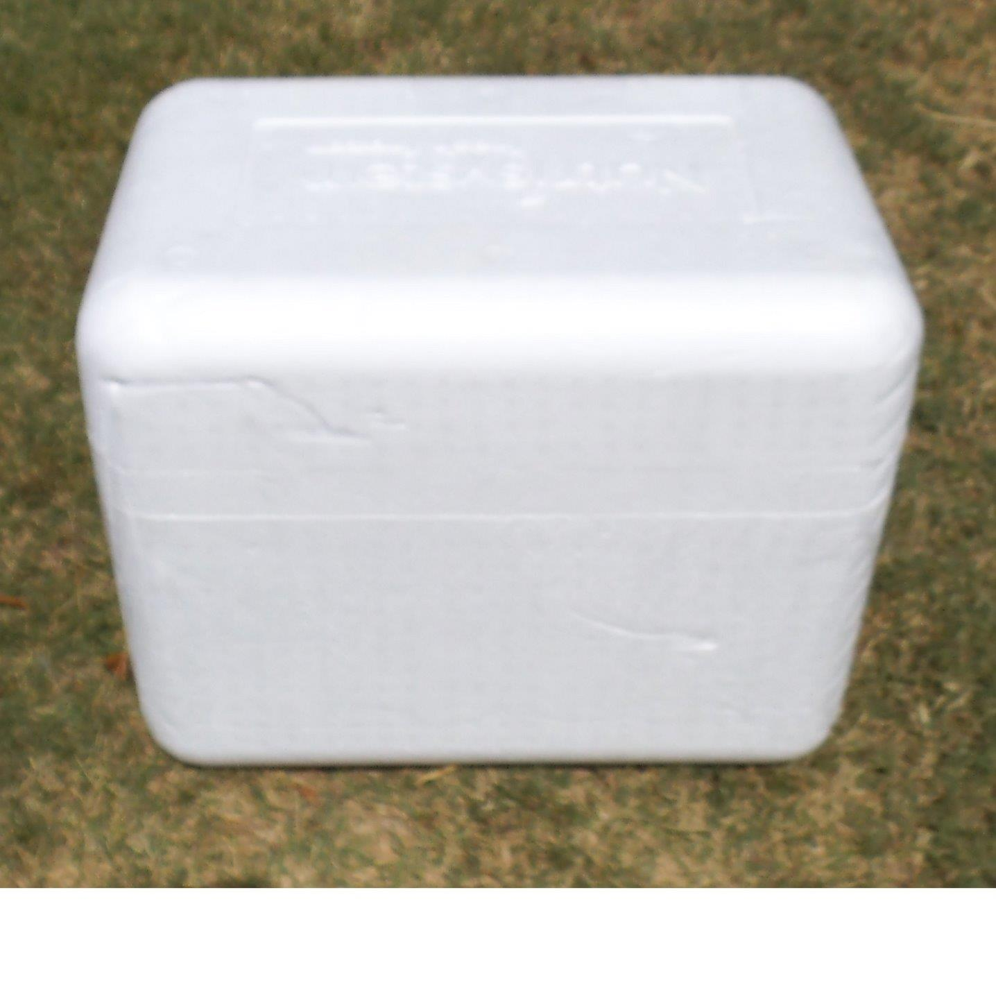 Green Styrofoam Coolers ~ Lg eps styrofoam insulated shipping cooler container w
