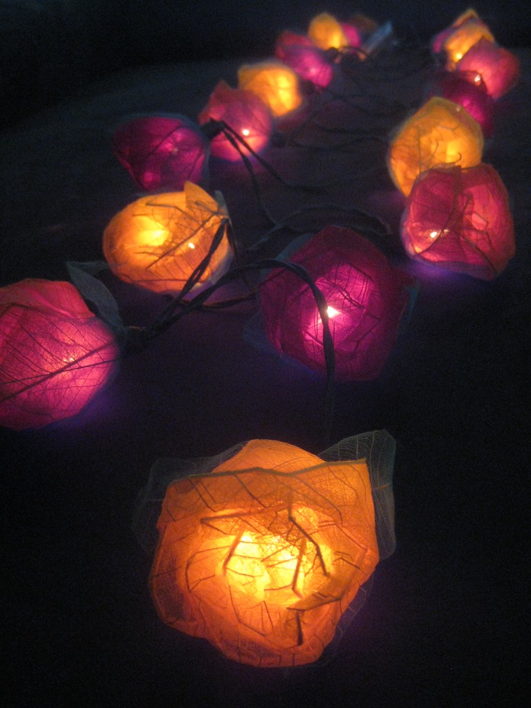 Led String Lights Orange : 20 RED ORANGE YELLOW Battery Powered Large Rose Flower LED String Fairy Lights eBay