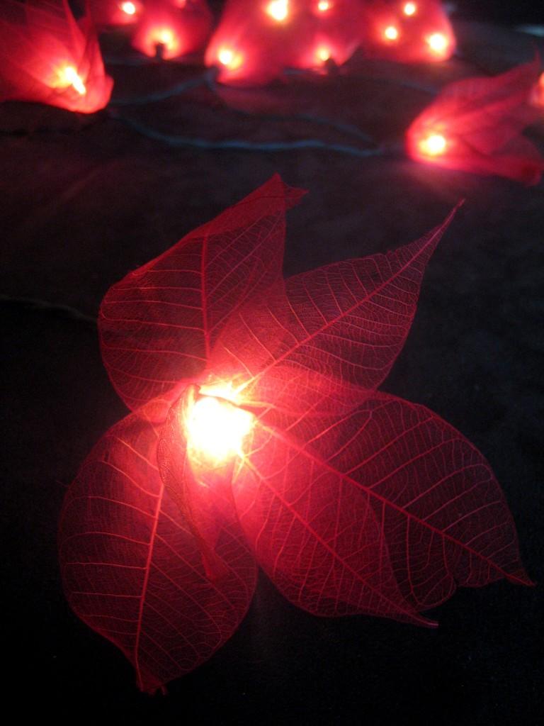 RED Star Flower Natural Leaf Skeleton LED String Fairy Lights Lanterns-Christmas eBay