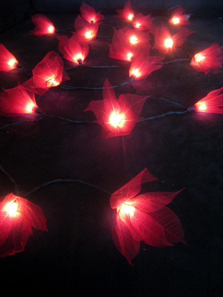 35 RED Star Flower 5M LONG LENGTH String LED Fairy Lights Christmas Decoration eBay