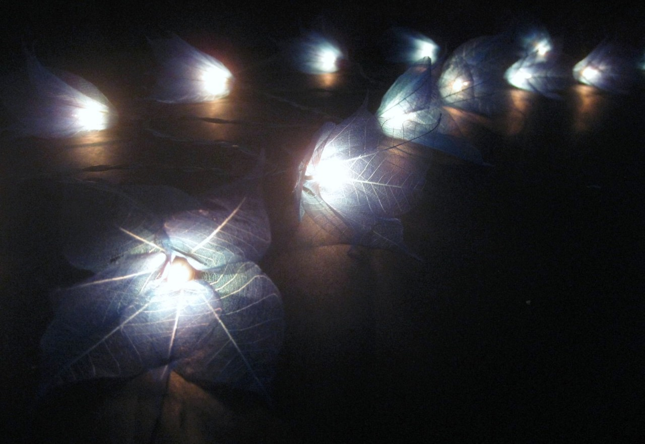 Blue Lantern String Lights : BLUE STAR FLOWER LANTERNS STRING FAIRY LIGHTS Party eBay