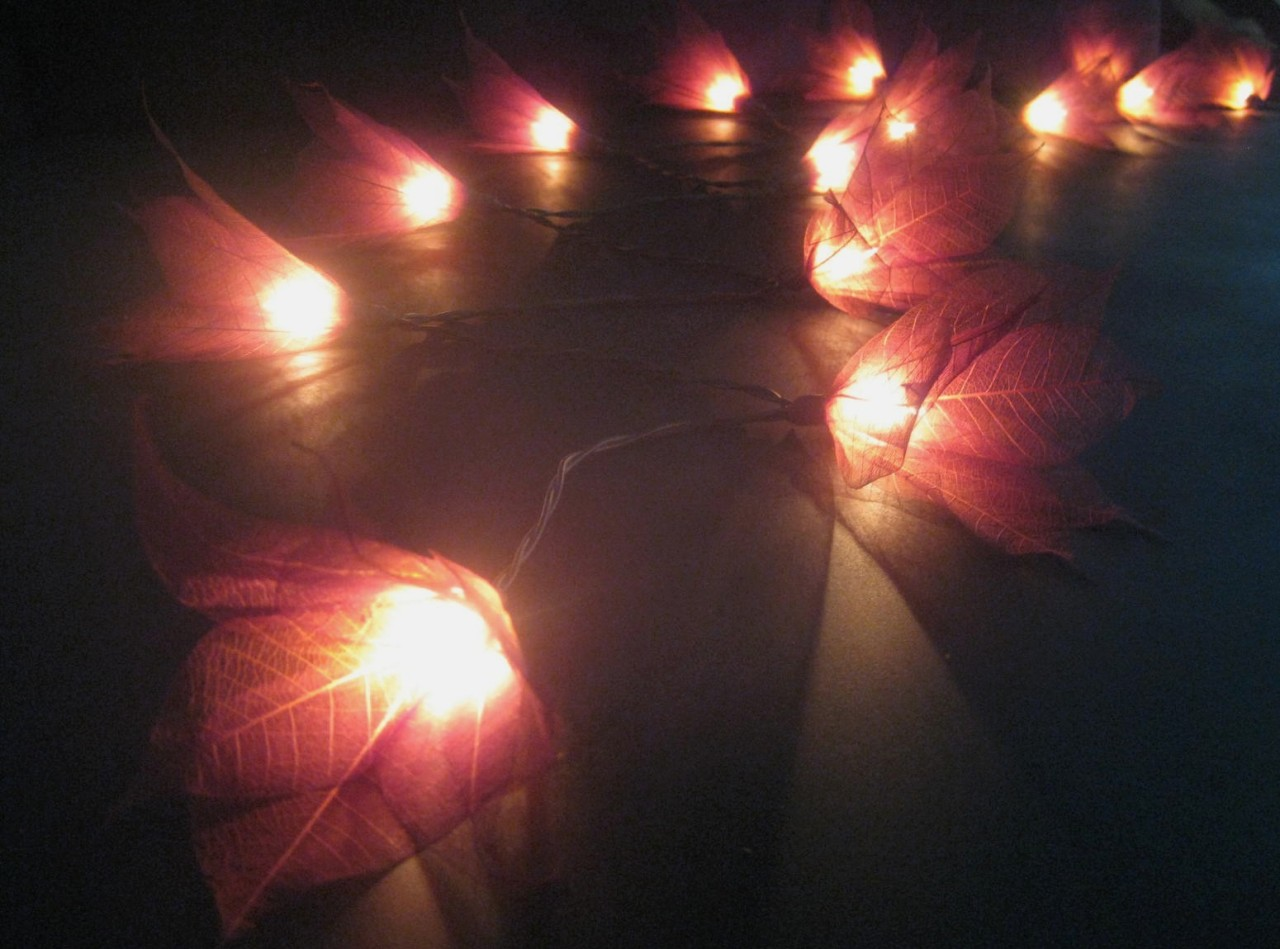 20 BROWN Battery Operated Star Flower LED String Fairy Lights Home Patio Decor eBay