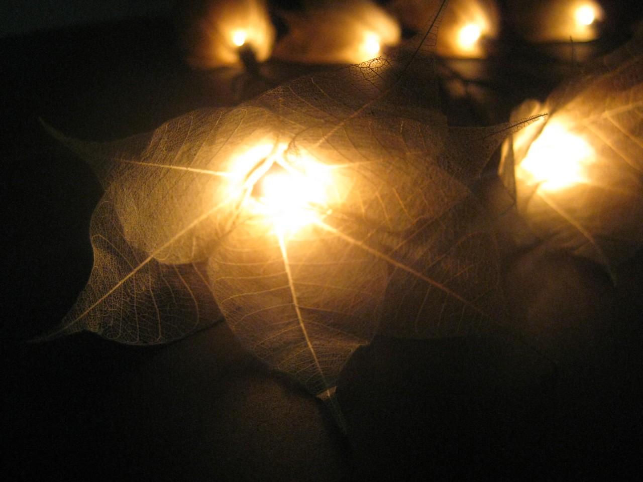 20 GOLD Battery Powered Star Flower LED String Fairy Lights Christmas Party Gift eBay