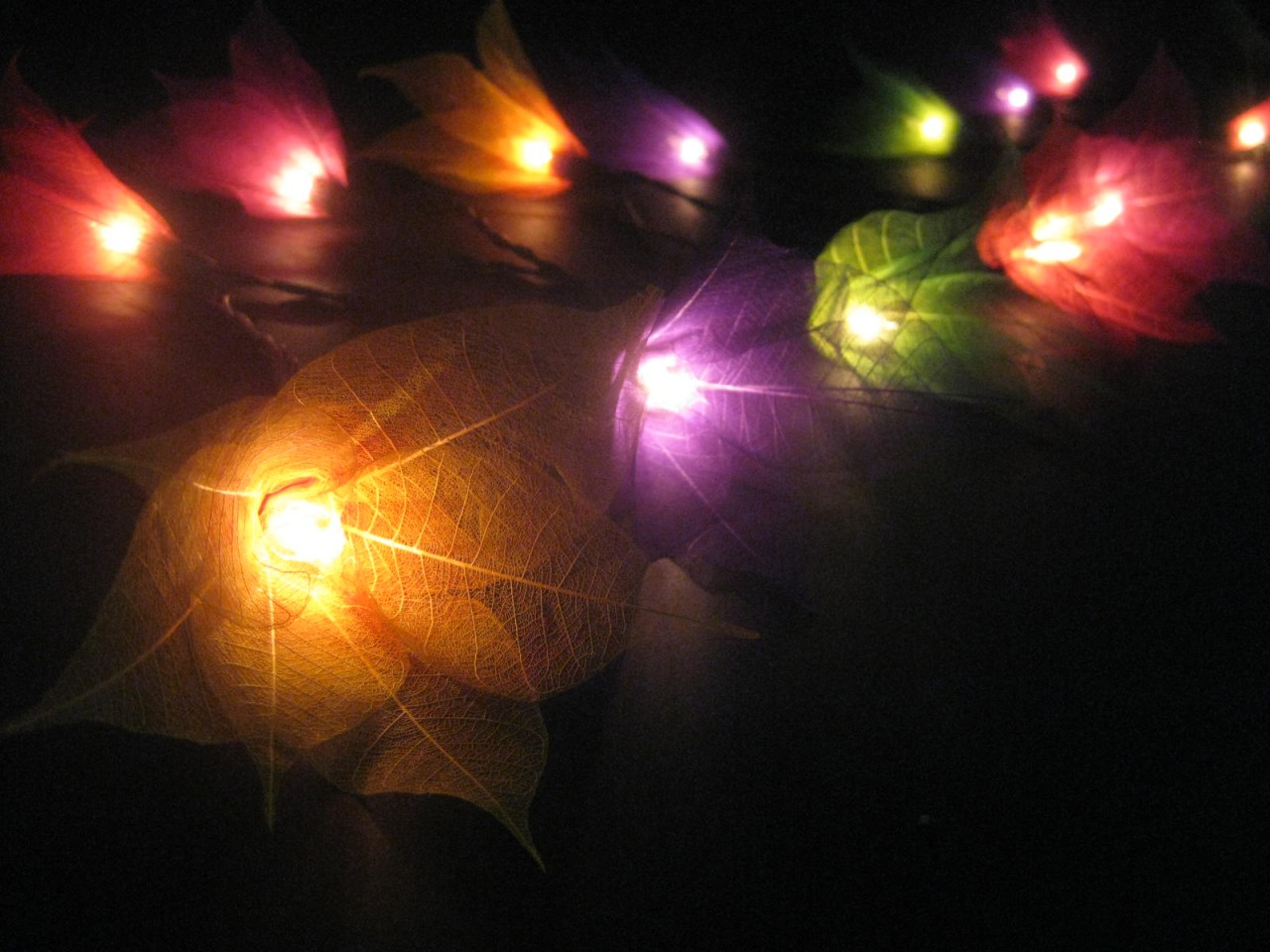 String Lights On House : 20 MULTICOLOURED Battery Operated Star Flower LED String Fairy Lights Nightlight eBay