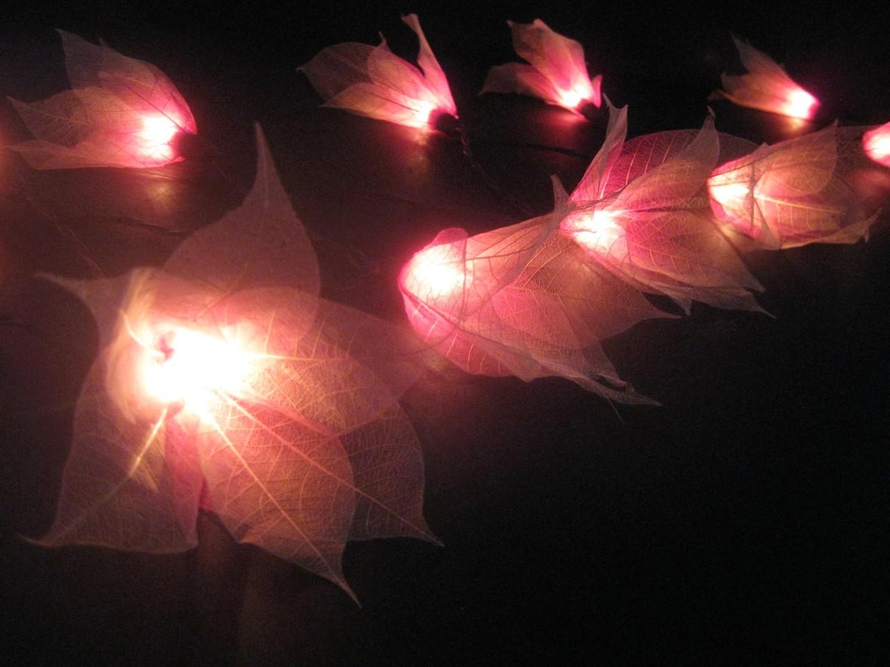 pink white star flower natural leaf skeleton led string. Black Bedroom Furniture Sets. Home Design Ideas