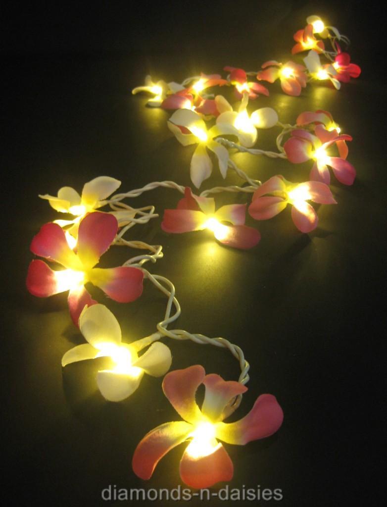 Flower String Lights Nz : 20 PINK & WHITE MIX Frangipani Flower LED String Fairy Lights Floral Decor Kids eBay
