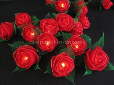 Rose String Lights Target : RED LARGE ROSE NATURAL FLOWER LED STRING FAIRY LIGHTS Valentines/Gift/Wedding