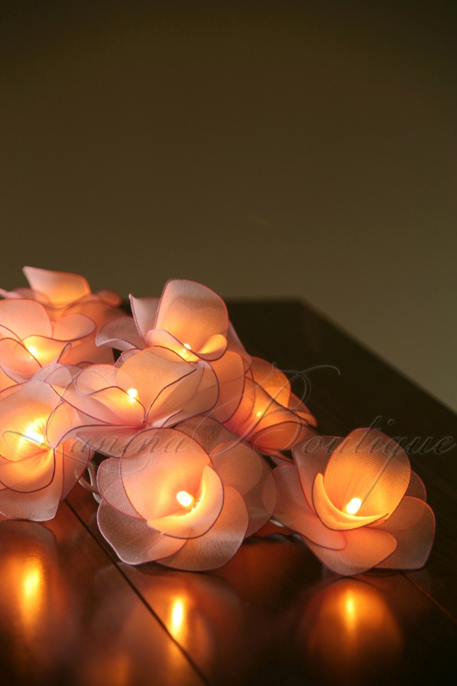 20 Light Pink Nylon Rose Flower Led String Fairy Lights