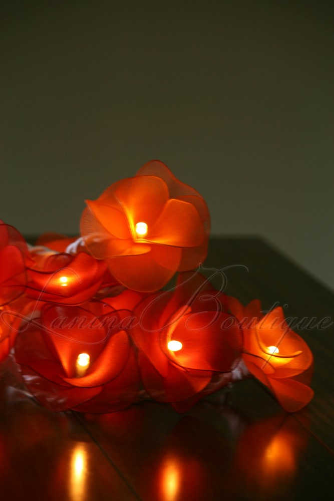 Led String Lights Orange : 20 RED & ORANGE Nylon Rose Flower LED String Fairy Lights Lanterns NEW Christmas