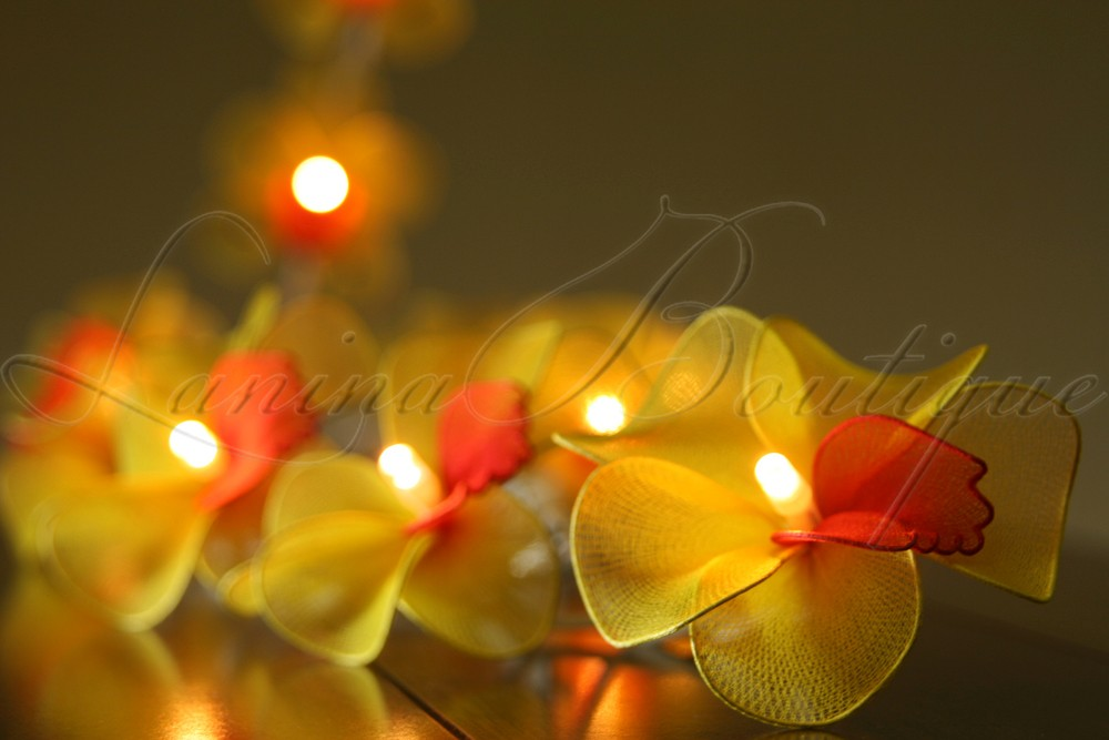 Red Flower String Lights : 20 Yellow Red Orchid Flower LED String Fairy Lights Aus Plug or Battery Pack eBay