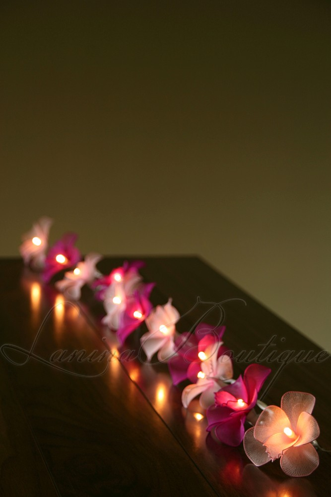 Pink String Lights Battery Operated : 20 LIGHT & DARK PINK MIX Orchid Flower BATTERY OPERATED String LED Fairy Lights
