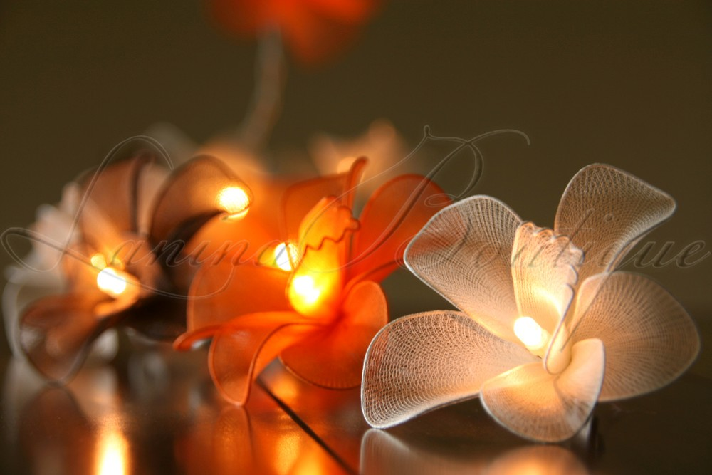 20 / 35 LED Nylon Orchid Flower String Fairy Lights AUS PLUG Wedding Decor 3M 5M eBay