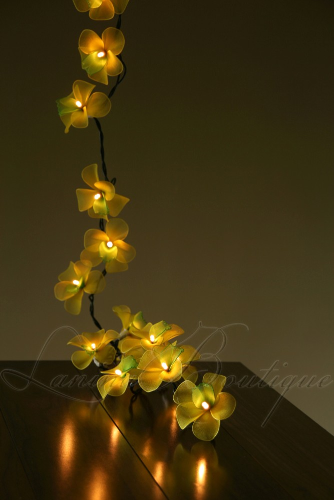 Green Flower String Lights : 35 Yellow Green Orchid Flower Extra Long 5M LED String Fairy Lights Lanterns eBay