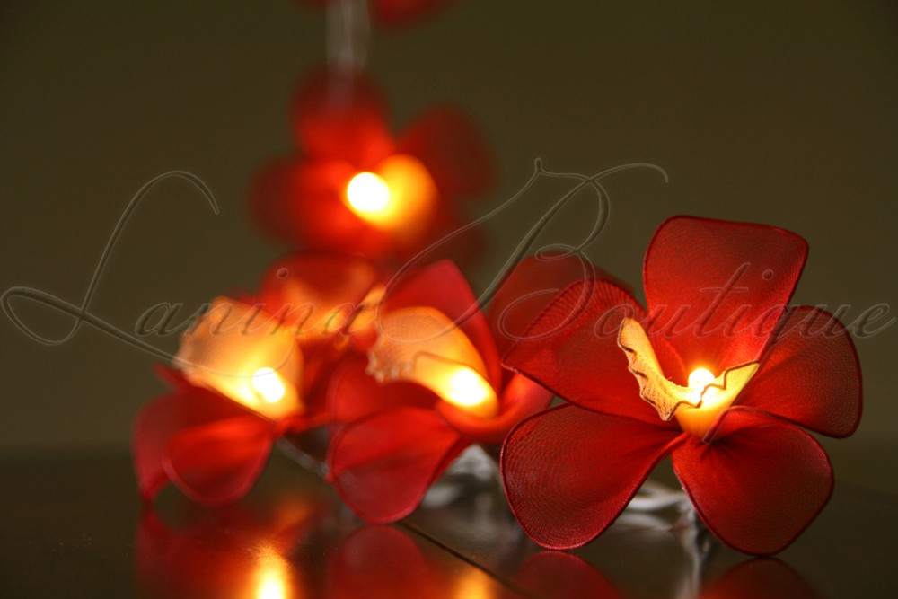 Led String Lights Orange : 20 Red Orange Orchid Flower LED String Fairy Lights Aus Plug or Battery Pack eBay