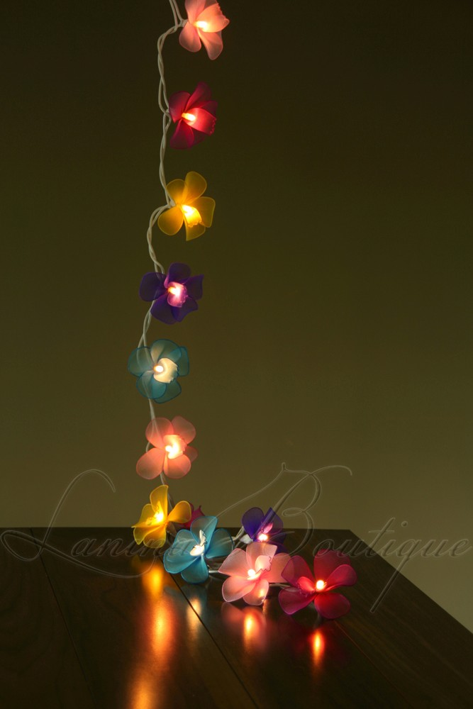 20 MULTICOLOURED Orchid Flower Battery Powered LED String Fairy Lights Lighting eBay