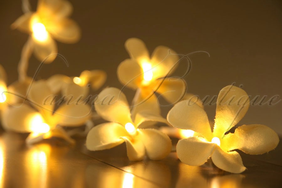 Yellow Led String Lights : 20 YELLOW Frangipani Flower 3M LED String Fairy Lights AUS PLUG Wedding Cream eBay