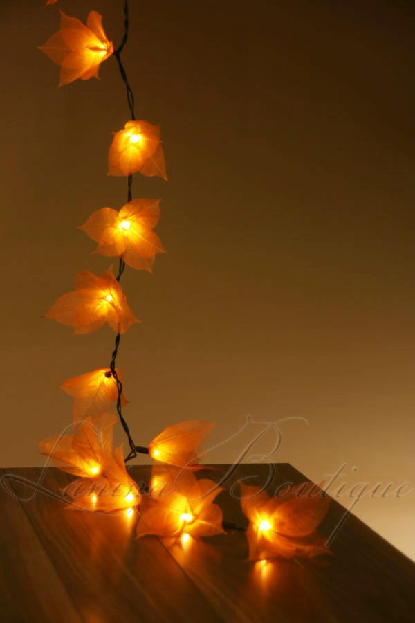 Led String Lights Orange : 20 ORANGE Star Flower LED 4m String Fairy Lights Lanterns Wedding Decor AUS PLUG eBay