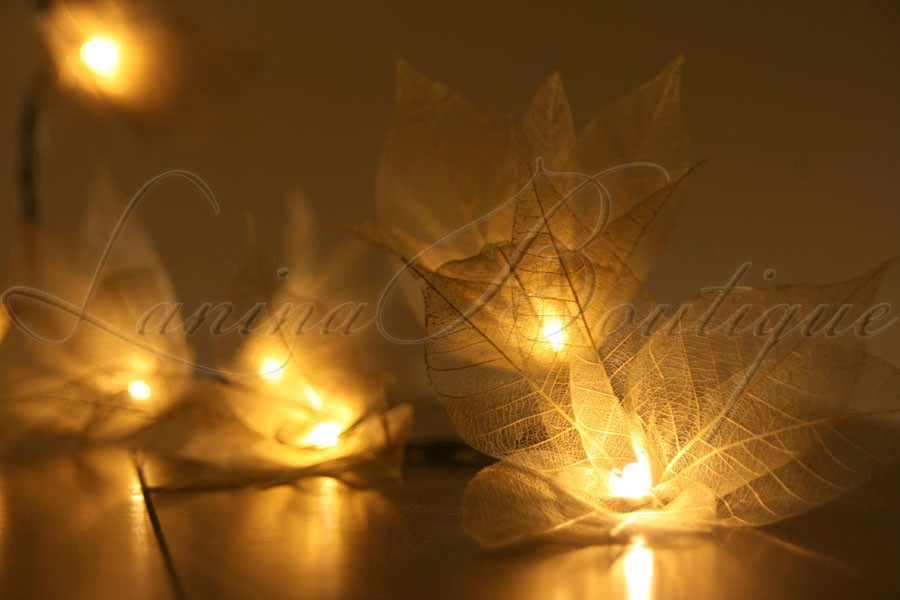 20 GOLD Star Flower LED 4m String Fairy Lights Lanterns Wedding Decor AUS PLUG eBay
