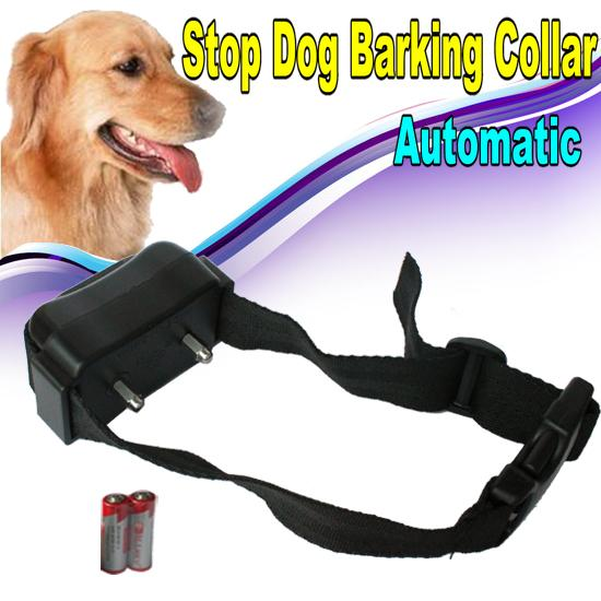 Shock Collar For Barking Big Dogs