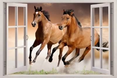 Image result for horses in house animation
