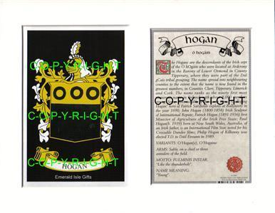 HODGE-to-HOSEY-Family-Coat-of-Arms-Crest-History-Mount-or-Framed