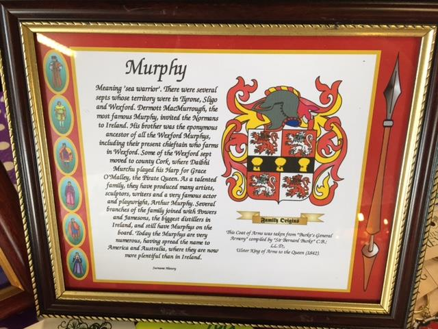 Mc Givney to Mc Ilhenney Family Coat of Arms FRAMED Over 1000000 ...