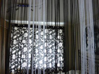 Black Silver Hanging Strand Divider Door Screen Insect Fly Curtain Mosquito Ebay