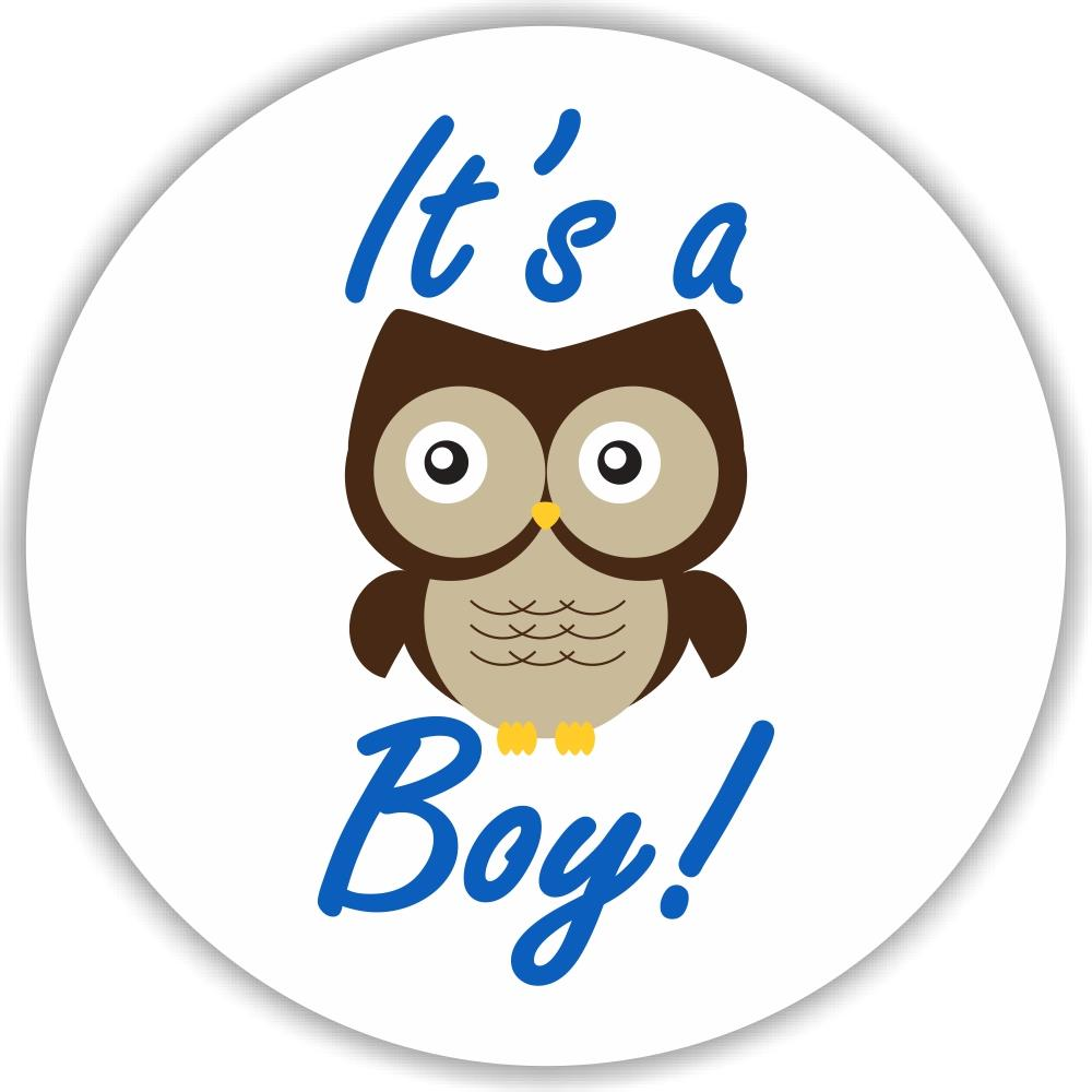 Baby Shower Stickers For Favors: 108 It's A Boy Owl Stickers Labels Baby Shower Party