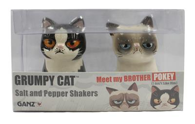 Ganz Grumpy Cat And Pokey Salt And Pepper Shakers | eBay